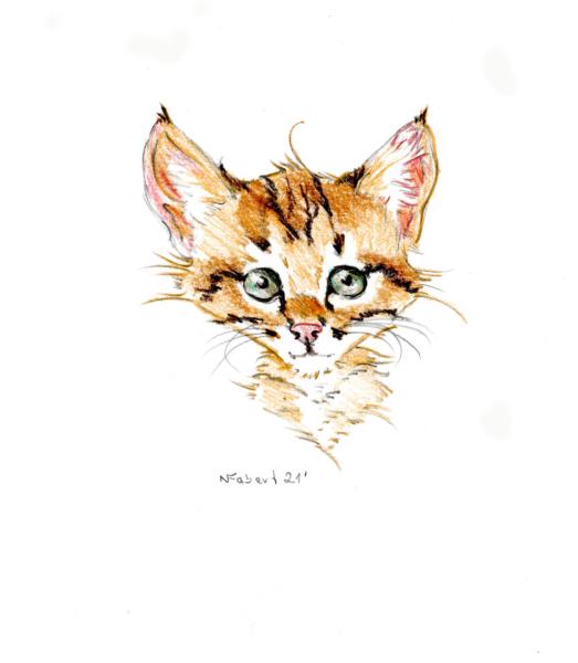 Katzenkarikatur