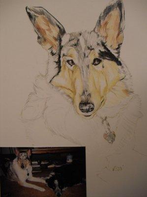 Bild portrait-zeichnung-005-jpg
