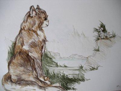 Bild tiere-zeichnung-111-jpg