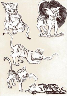 Bild tiere-zeichnung-118-jpg